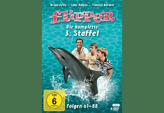 Flipper - Die komplette 3. Staffel DVD