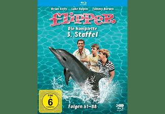 Flipper - Die komplette 3. Staffel Blu-ray