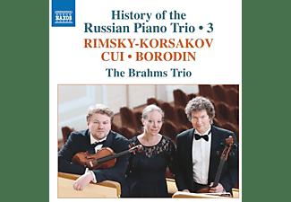 Trio Brahms - History of the Russian Piano Trio,Vol.3  - (CD)