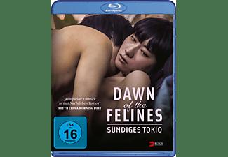 Dawn of the Felines - Sündiges Tokio Blu-ray