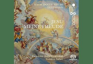 Gordon Bachwerkvokal/safari - Jesu meine Freude  - (SACD Hybrid)