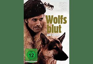 Jack London: Wolfsblut DVD