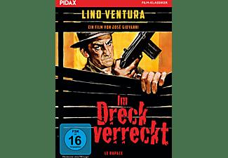 Im Dreck verreckt DVD