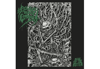 House By The Cemetary - Rise Of The Rotten  - (Vinyl)
