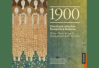 Michael/wiener Kammerchor Grohotolsyk - 1900-Chormusik  - (CD)
