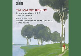 Vizine/Kuzma/Latvian National Symphony Orchestra - Symphonies Nos.4 And 6 - Canzona Sonata  - (CD)
