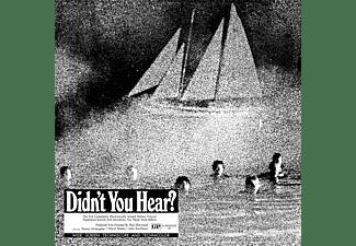 Mort Garson - DIDN T YOU HEAR?  - (Vinyl)