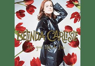 Belinda Carlisle - LIVE YOUR LIFE BE FREE  - (Vinyl)