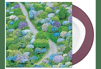 Fiddlehead - Between The Richness (Ltd.White In Purple Vinyl)  - (Vinyl)