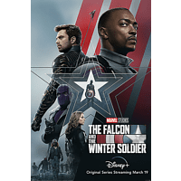 The Falcon And The Winter.. Soldier Poster
