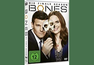 Die Knochenjägerin - Staffel 12 DVD