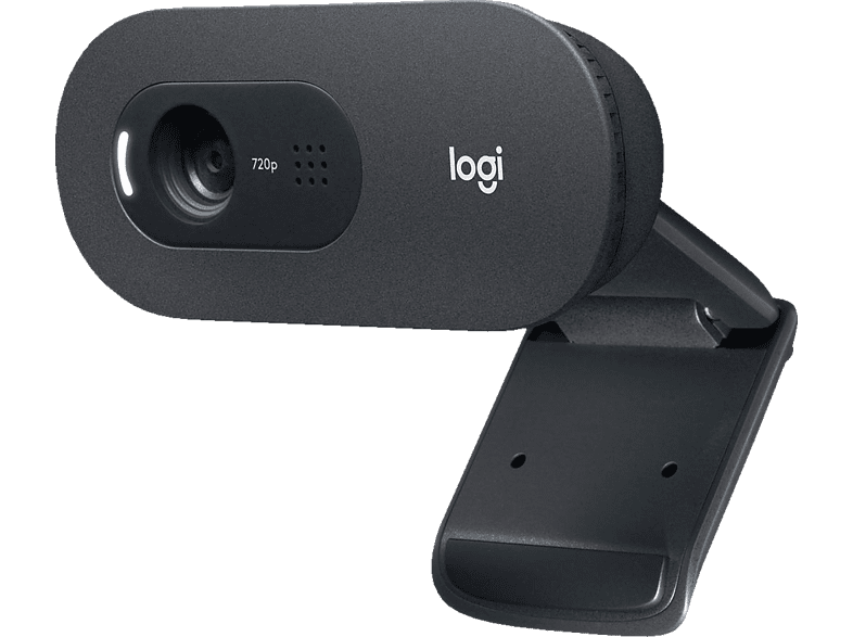 LOGITECH C505 HD-Webcam