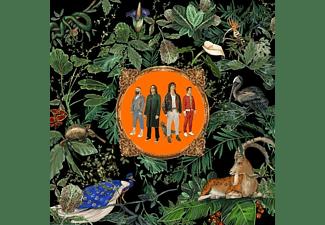 Don Broco - Amazing Things [Vinyl]