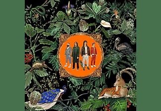 Don Broco - Amazing Things [CD]