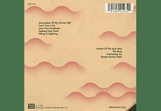 Gruff Rhys - Seeking New Gods  - (CD)
