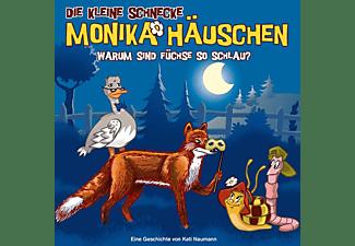Die Kleine Schnecke Monika Häuschen - 62: Warum Sind Füchse So Schlau?  - (CD)