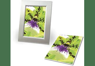 AVERY ZWECKFORM C2552-40P Premium, einseitig beschichtet, 250 g/m², Inkjet Fotopapiere 100 x 150 mm 100 x 150 mm  Inhalt: 80 Blatt