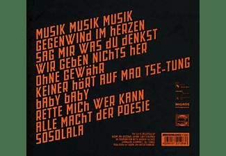 Der Elektrische Mann - MUSIK MUSIK MUSIK  - (CD)
