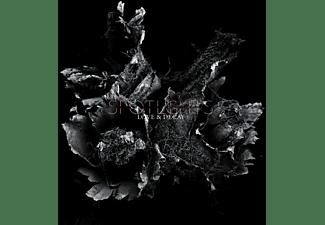 Spotlights - Love & Decay (2LP)  - (Vinyl)