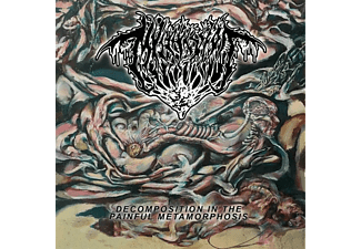 Mvltifission - Decomposition In The Painful Metamorphosis [CD]