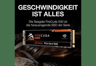 SEAGATE Firecuda 530 NVMe Interne Festplatte Retail, 1 TB NAND Flash, SSD PCI Express, intern