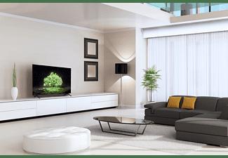 LG ELECTRONICS OLED55A19LA (2021) 55 Zoll 4K Smart OLED TV