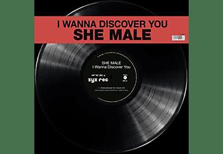 She Male - I Wanna Discover You  - (Vinyl)