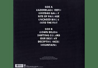 Venues - Solace (Marbled)  - (Vinyl)