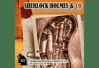 Sherlock Holmes & Co - Professor van Dusen-Verhängnisvolle Hoffnung [CD]