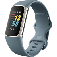 FITBIT Fitnesstracker Charge 5, Graublau/Platin