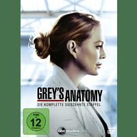 Grey's Anatomy - Die komplette siebzehnte Staffel DVD