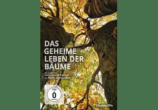 Das geheime Leben der Bäume [Blu-ray + DVD]