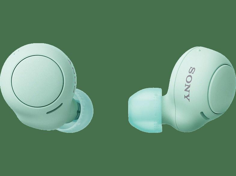 SONY WF-C500 Earbuds, Ladeetui, In-ear Kopfhörer Bluetooth Grün