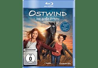 Ostwind-Der große Orkan [Blu-ray]