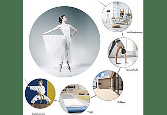 COSTWAY Ballet Bar Silber