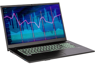 CAPTIVA Power Starter I61-811, Business-Notebook mit 17,3 Zoll Display, 16 GB RAM, 500 GB SSD, Intel UHD Graphics 620, silberfarben