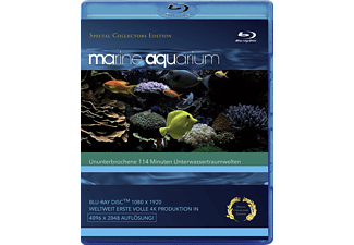 MarineAquarium - (Blu-ray)