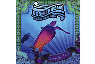 Davy & Back Door Slam Knowles - COMING UP FOR AIR [CD]
