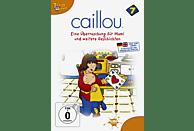 Caillou 7 - Eine Überraschung für Mami und weitere Geschichten [DVD]