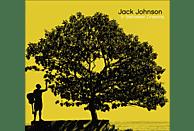 Jack Johnson - IN BETWEEN DREAMS [CD]
