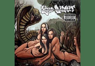 Limp Bizkit - Gold Cobra  - (CD)