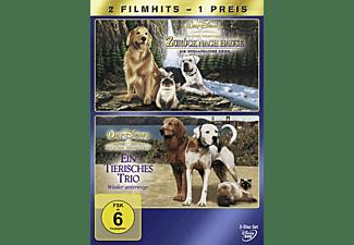 Zurück nach Hause - Die unglaubliche Reise / Ein tierisches Trio - Wieder unterwegs DVD