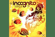Incognito - Surreal [CD]