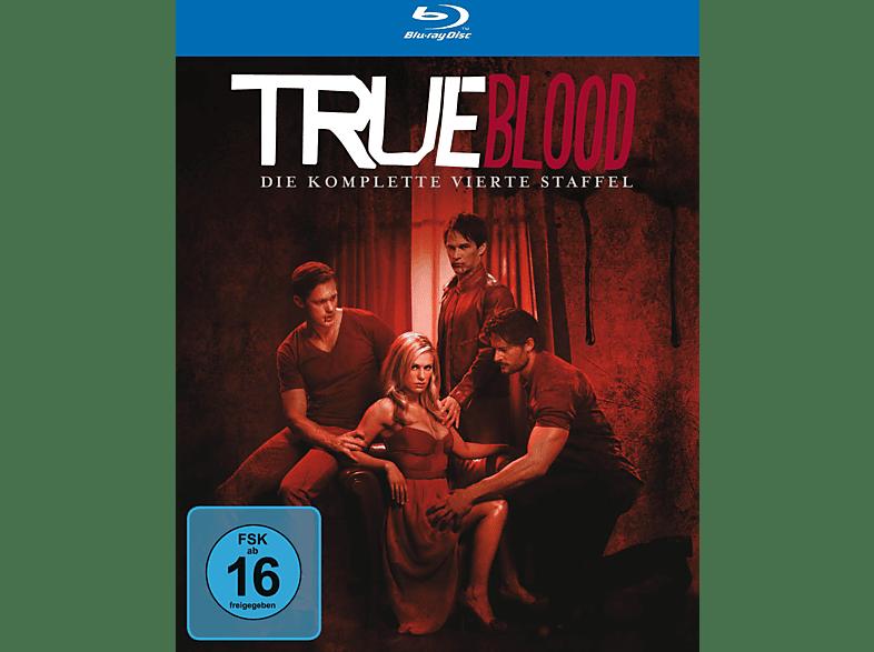 True Blood - Staffel 4 [Blu-ray + DVD]