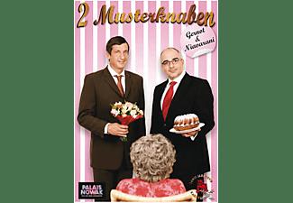 2 Musterknaben [DVD]
