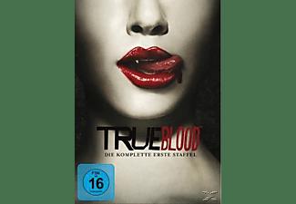 True Blood - Die komplette erste Staffel DVD