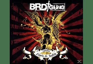 BRDigung - Zwischen Engeln & Teufeln  - (CD)