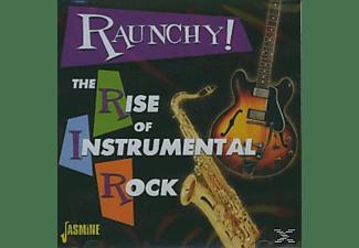 VARIOUS - RAUNCHY! RISE OF INSTRUMENTAL ROCK  - (CD)