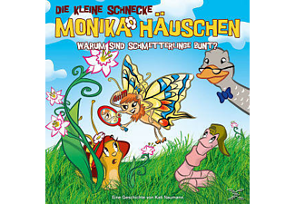 DIE KLEINE SCHNECKE MONIKA HÄUSCHEN - 28: Warum Sind Schmetterlinge Bunt?  - (CD)