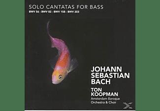 Ton Koopman, Ton & The Amsterdam Baroque Orchestra Koopman - Solo Cantatas For Bass  - (CD)